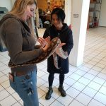 Snake Phobia - Kindt Clinics treats your fear of snakes.